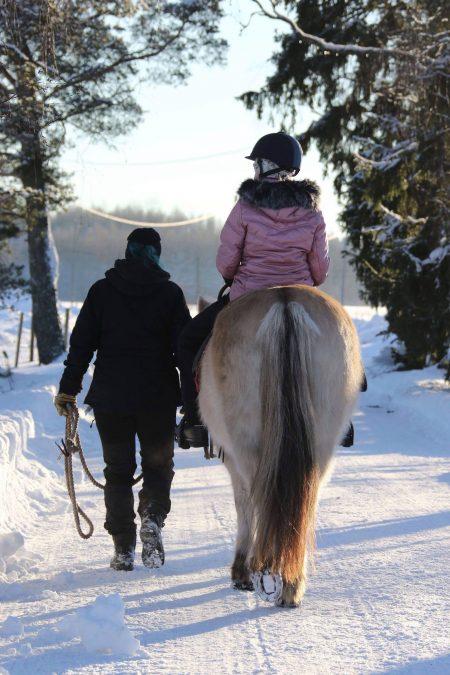 talvella. k.Christa Matikainen